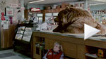 Chobani: 'Bear' Super Bowl spot
