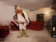 Burger King's Crispin-created Subservient Chicken