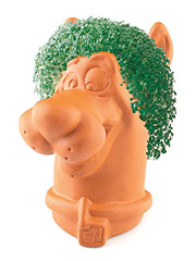Chia Pets The Evergreen Holiday Tradition Adage