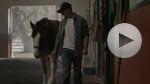 Budweiser: 'Brotherhood' Super Bowl spot