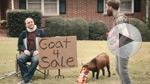 Doritos: 'Goat 4 Sale'