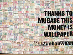 The Zimbabwean Newspaper: Trillion Dollar Campaign