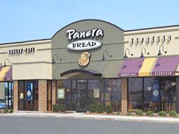 panera case study